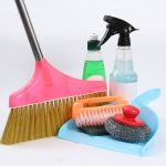 トイレ・換気扇・お部屋のお掃除コツやお風呂場の害虫対策まとめ